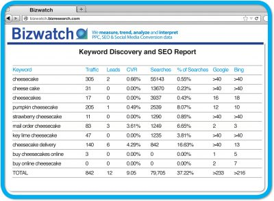 Example of SEO report in the Bizwatch SEO tool