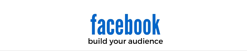 Facebook audience building, content creation & advertising